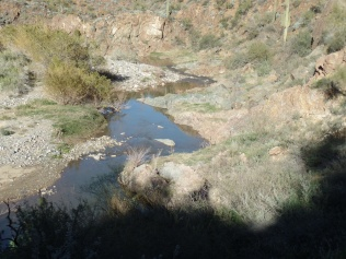 Agua Fria River, north of Black Canyon City