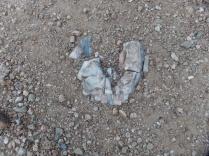 Heart-shaped limestone, along Skyline section, Glorianna Trail