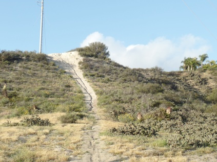 Here is a steep side trail, leading to a housing area just west of Rice Canyon.