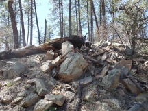 Gray granite outcropping, 1/4 mile northeast of White Spar