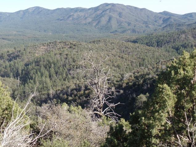 Sierra Prieta Range, from Wolverton Mountain Trail