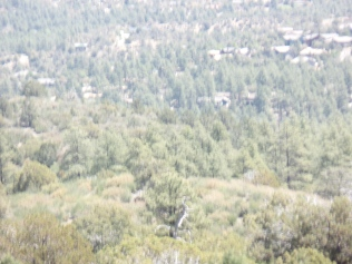 View of Pine Lakes and Kingswood subdivisions, from Javelina Trail, Prescott